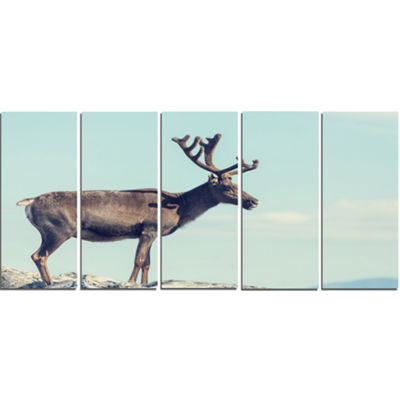 Designart Large Reindeer in Norway Abstract CanvasArt Print- 5 Panels