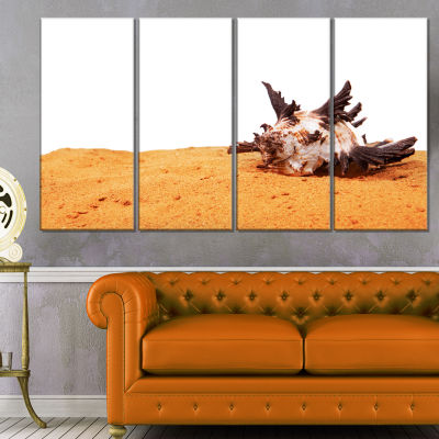 Large Sea Shells on Sand Seascape Canvas Art Print- 4 Panels