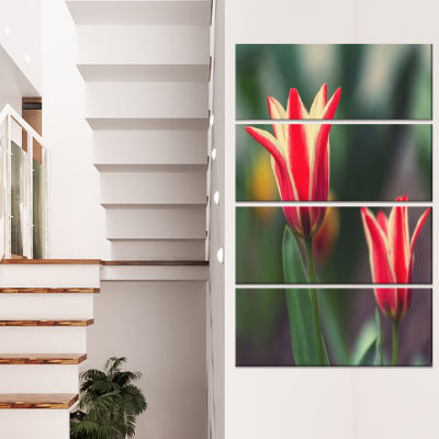Designart Large Tulips on Green Background Large Flower Canvas Art Print - 4 Panels