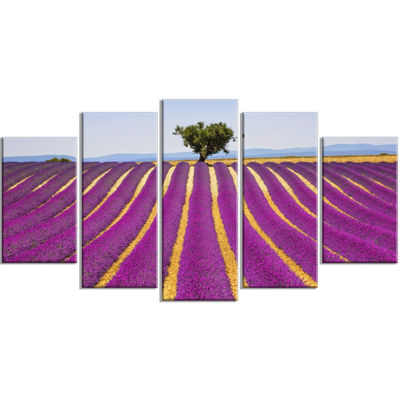 Designart Lavender and Lonely Tree Uphill Oversized Landscape Wrapped Wall Art Print - 5 Panels