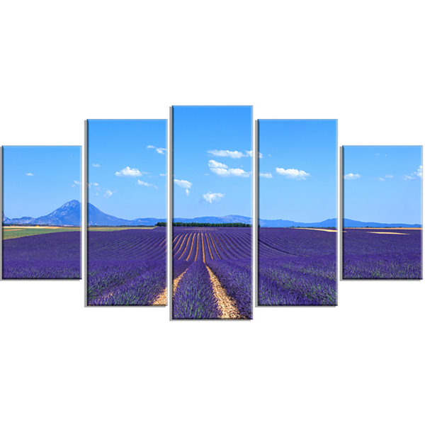 Designart Lavender Blooming Fields and Trees Oversized Landscape Wrapped Wall Art Print - 5 Panels