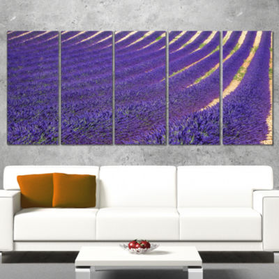 Lavender Blooming Fields As Texture Oversized Landscape Wrapped Wall Art Print - 5 Panels