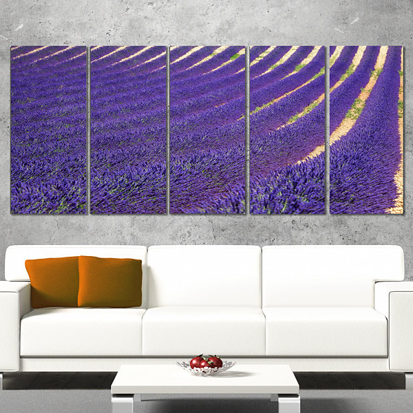 Designart Lavender Blooming Fields As Texture Oversized Landscape Wrapped Wall Art Print - 5 Panels