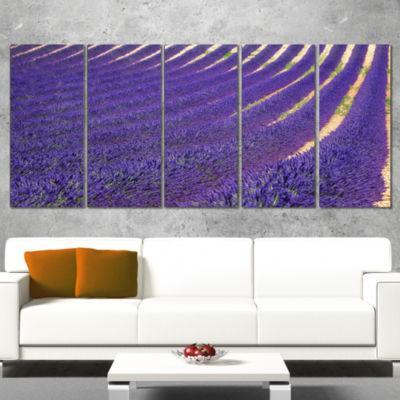 Designart Lavender Blooming Fields As Texture Oversized Landscape Wall Art Print - 5 Panels
