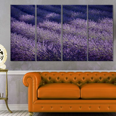 Designart Lavender Field and Ray of Light Oversized Landscape Wall Art Print - 4 Panels