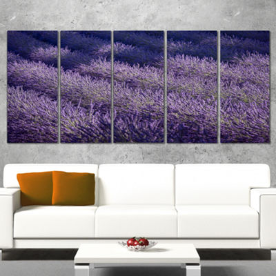 Designart Lavender Field and Ray of Light Oversized Landscape Wall Art Print - 5 Panels