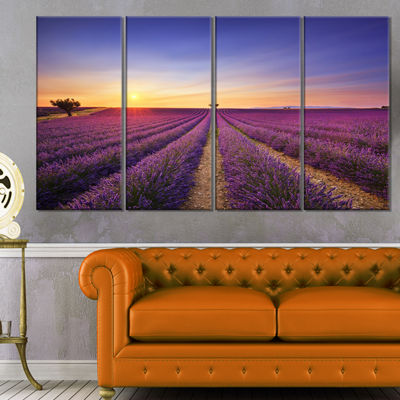 Designart Lavender Field in Provence France Oversized Landscape Wall Art Print - 4 Panels