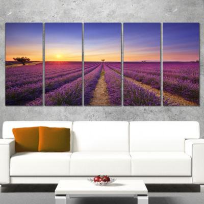 Designart Lavender Field in Provence France Oversized Landscape Wall Art Print - 5 Panels