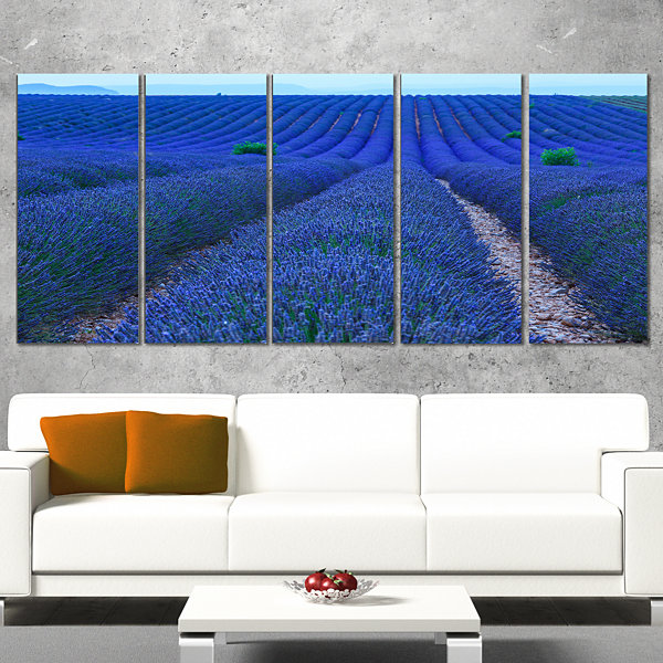 Designart Lavender Field Sunset Near Valensole Floral CanvasArt Print - 5 Panels