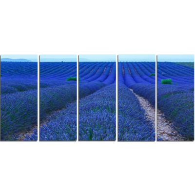 Lavender Field Sunset Near Valensole Floral CanvasArt Print - 5 Panels