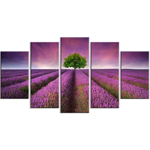 Designart Lavender Field Sunset With Single Tree Floral Wrapped Canvas Art Print - 5 Panels