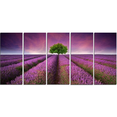 Designart Lavender Field Sunset With Single Tree Floral Canvas Art Print - 5 Panels