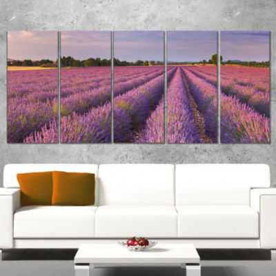 Designart Lavender Flower Rows in France LandscapeCanvas Art Print - 5 Panels