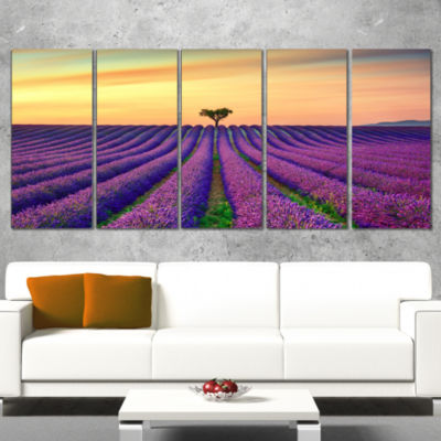 Designart Lavender Flower Rows in Provence Oversized Landscape Wrapped Wall Art Print - 5 Panels