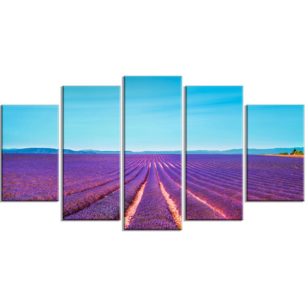 Designart Lavender Flowers and Clear Sky OversizedLandscapeWrapped Wall Art Print - 5 Panels