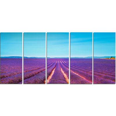 Designart Lavender Flowers and Clear Sky OversizedLandscapeWall Art Print - 5 Panels