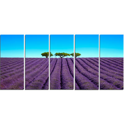 Designart Lavender Flowers and Uphill Green TreesOversizedLandscape Wall Art Print - 5 Panels