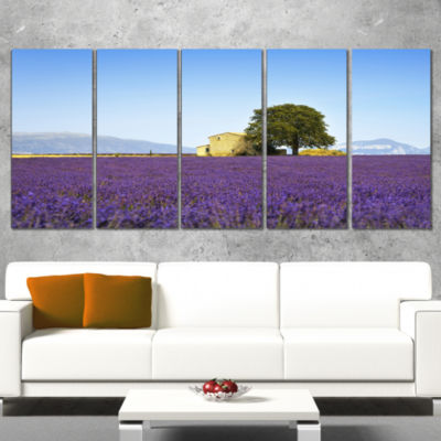 Designart Lavender Flowers Blooming Field Oversized Landscape Wall Art Print - 4 Panels