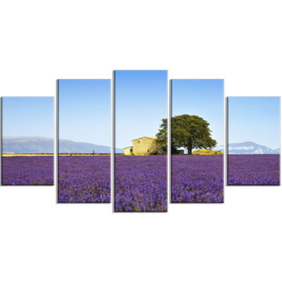 Designart Lavender Flowers Blooming Field Oversized Landscape Wrapped Wall Art Print - 5 Panels