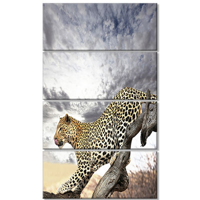 Designart Leopard on Tree Under Cloudy Sky AfricanWall ArtPrint - 4 Panels