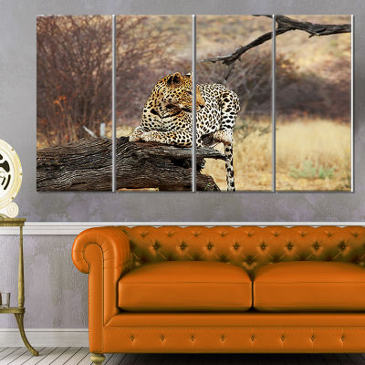 Designart Leopard Sitting on Tree Trunk Extra Large AfricanCanvas Art Print - 4 Panels