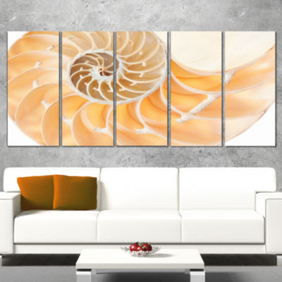 Designart Light Brown Nautilus Shell Abstract Canvas Art Print - 5 Panels