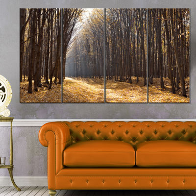 Light in The Forest Path Panorama Forest Canvas Art Print - 4 Panels