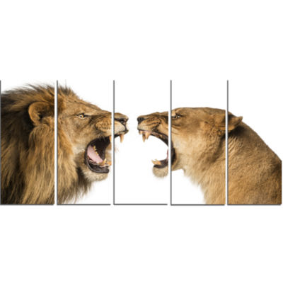 Lion and Lioness Roaring Abstract Canvas Art Print- 5 Panels