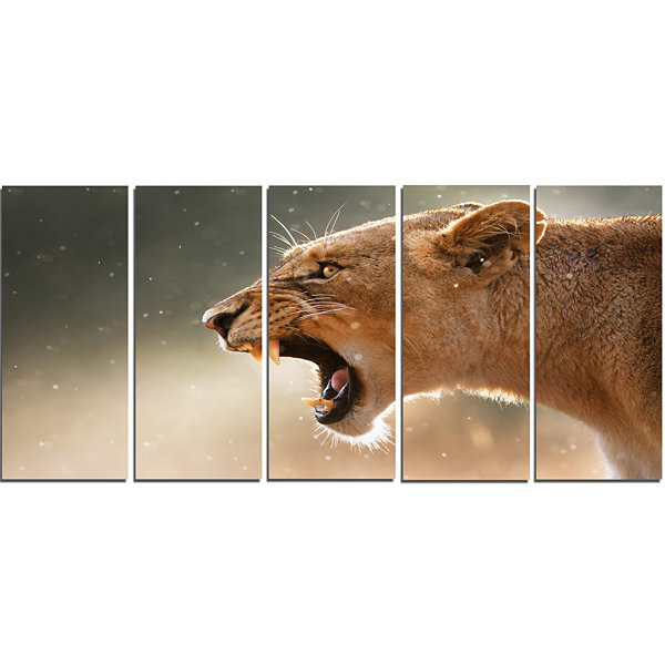 Designart Lion Showing Dangerous Teeth African Canvas Art Print - 5 Panels