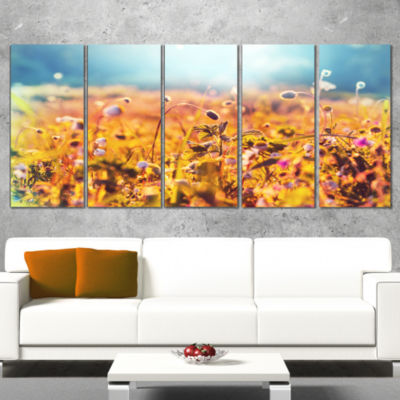 Little Mountain Flowers on Sunny Day Large FlowerWrapped Canvas Wall Art - 5 Panels