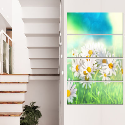 Little White Chamomiles in Garden Floral Canvas Art Print - 4 Panels