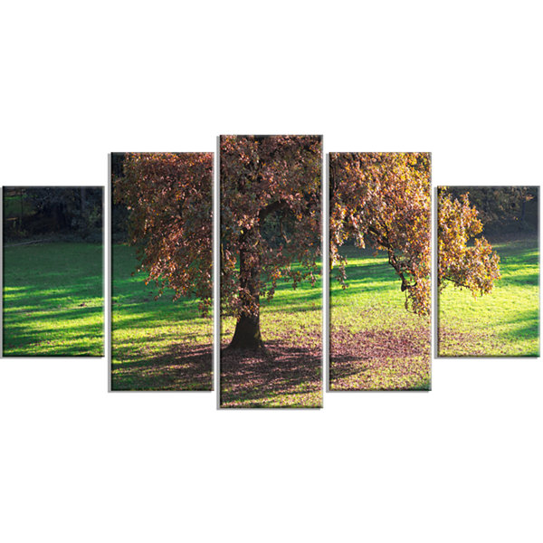 Lonely Beautiful Autumn Tree Landscape Wrapped Canvas Art Print - 5 Panels