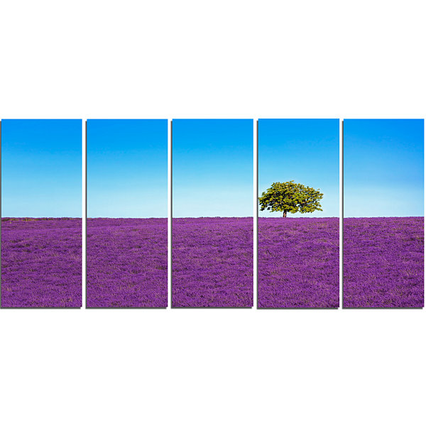 Designart Lonely Tree in Lavender Field OversizedLandscapeWall Art Print - 5 Panels