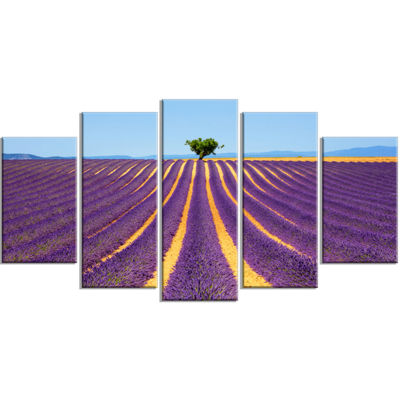 Designart Lonely Uphill Tree in Lavender Field Oversized Wrapped Landscape Wall Art Print - 5 Panels