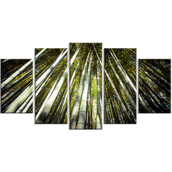 Designart Long Bamboos in Bamboo Forest Forest Canvas Wrapped Wall Art Print - 5 Panels
