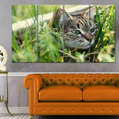 Designart Lovely Kitten in Grass Animal Art Painting - 4 Panels