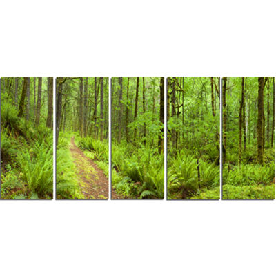 Designart Lush Forest Path Columbia River Forest Canvas WallArt Print - 5 Panels