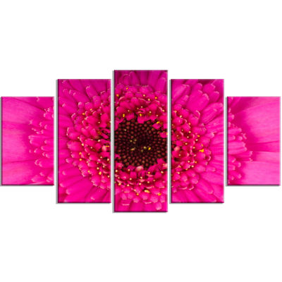 Macro Photo of Gerbera Flower Flowers Canvas Wrapped Wall Artwork - 5 Panels