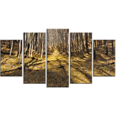 Majestic Autumn Forest Panorama Landscape ArtworkWrapped Canvas - 5 Panels