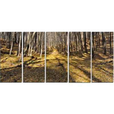 Majestic Autumn Forest Panorama Landscape ArtworkCanvas - 5 Panels