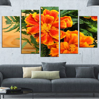 Designart Marigold Flower on Wooden Background Floral Wrapped Canvas Art Print - 5 Panels