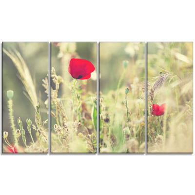 Designart Meadow With Wild Poppy Flowers Large Flower CanvasArt Print - 4 Panels