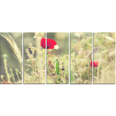 Designart Meadow With Wild Poppy Flowers Large Flower CanvasArt Print - 5 Panels