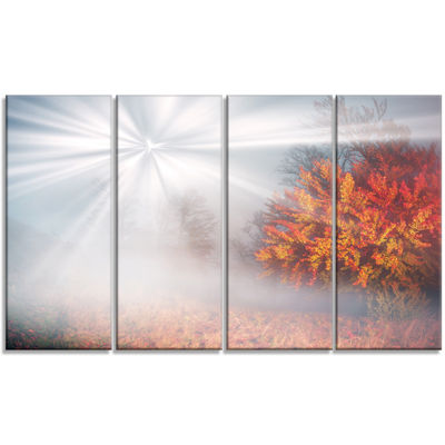 Designart Misty Sun in Red Autumn Forest LandscapePhotography Canvas Print - 4 Panels