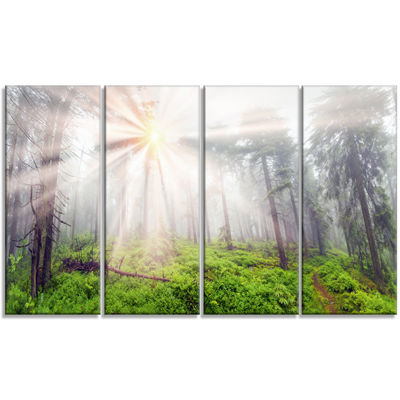 Designart Misty Sunrise in Forest Landscape Photography Canvas Art Print - 4 Panels