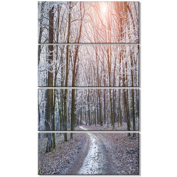 Misty Trail in Autumn Forest Landscape PhotographyCanvas Print - 4 Panels