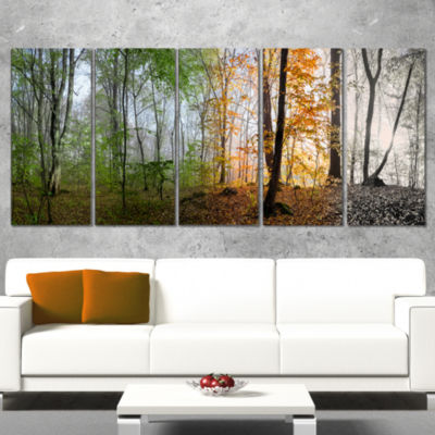 Designart Morning Forest Panorama Landscape Photography Canvas Print - 5 Panels