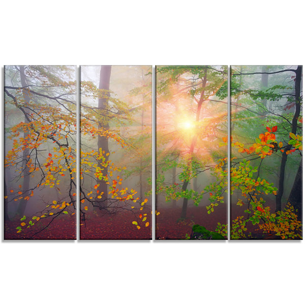 Designart Morning in Misty Green Forest LandscapePhoto Canvas Art Print - 4 Panels