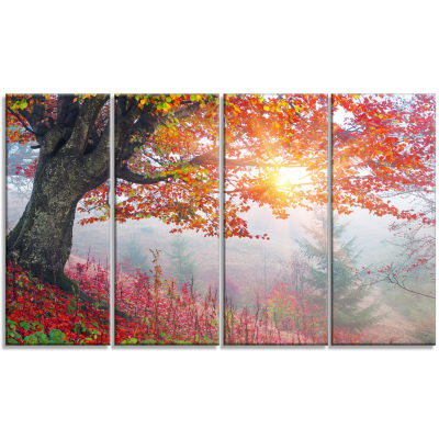 Morning in Misty Red Forest Landscape Photo CanvasArt Print - 4 Panels