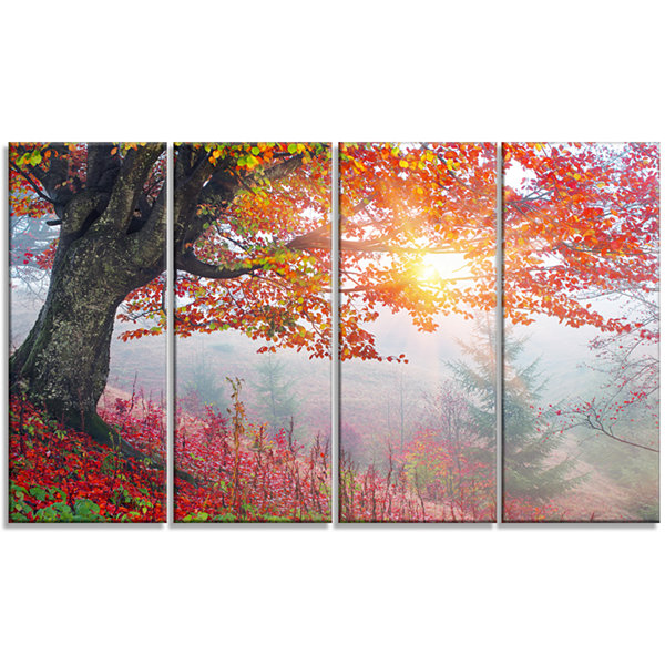 Designart Morning in Misty Red Forest Landscape Photo CanvasArt Print - 4 Panels